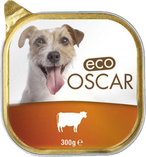 غذای تر سگ با طعم گوشت