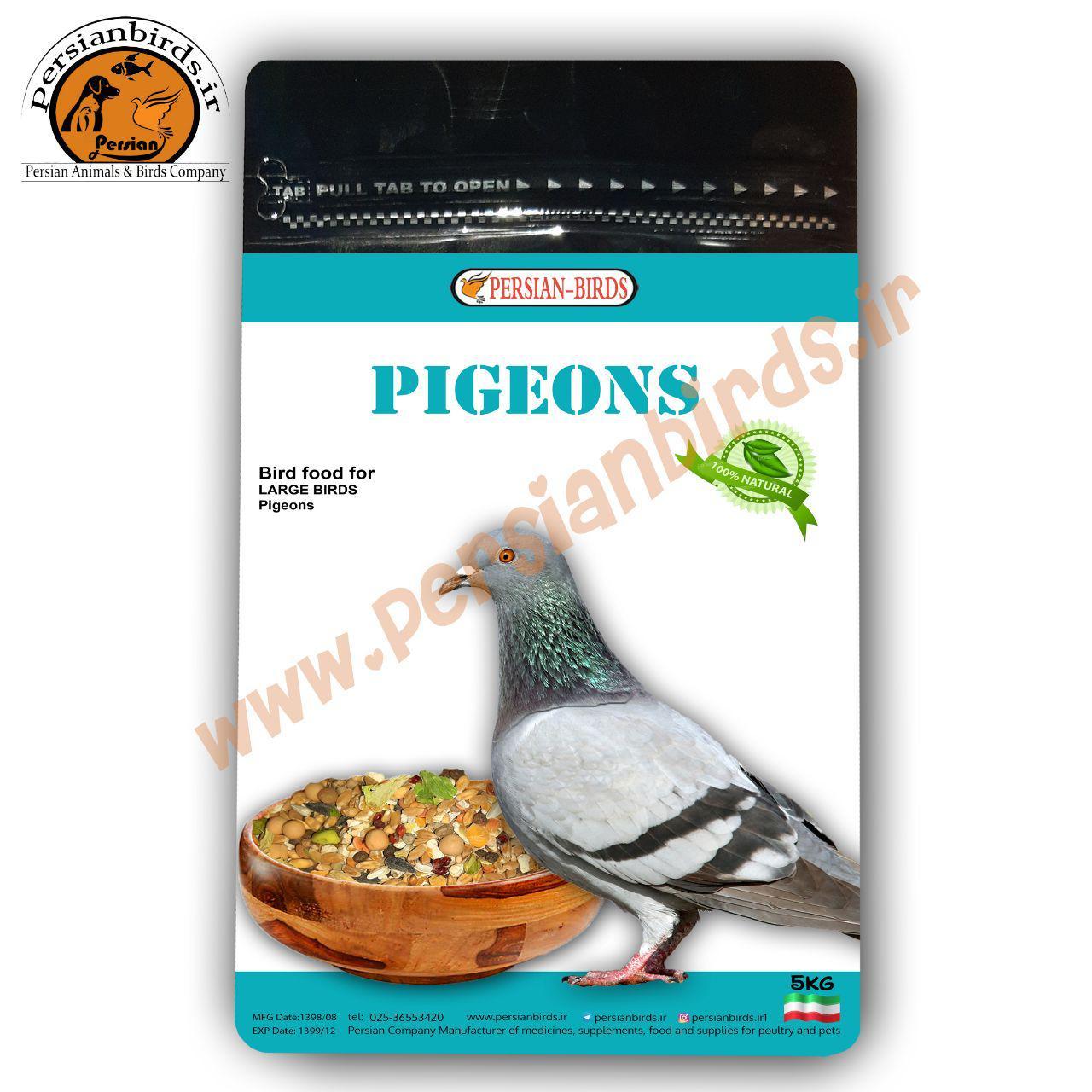 غذای کبوتر سانان